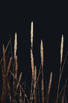 Canvas Print Golden Fields In The Dark