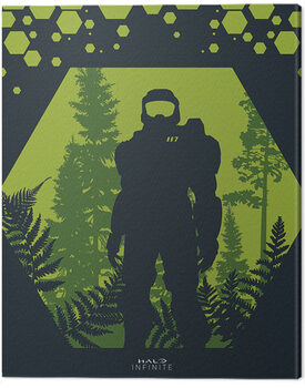 Canvas Print Halo: Infinite - Hex
