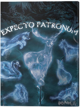 Canvas Print Harry Potter - Patronus