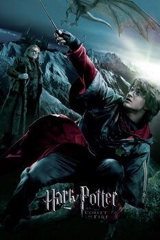 Canvas Print Harry Potter - The Goblet of Fire - Harry