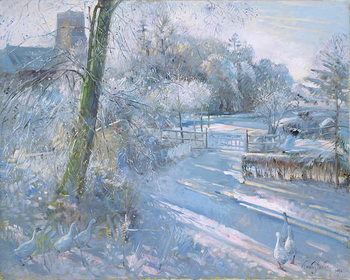 Hoar Frost Morning, 1996 Canvas Print