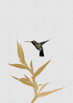 Canvas Print Hummingbird & Flower II