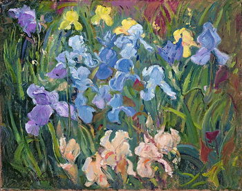 Canvas Print Irises: Pink, Blue and Gold, 1993