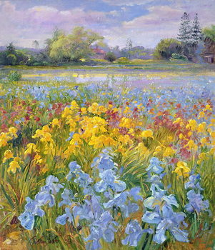 Irises, Willow and Fir Tree, 1993 Canvas Print