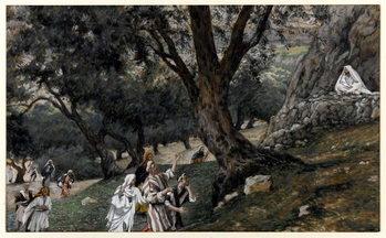 Jesus Went out into a Desert Place, illustration for 'The Life of Christ', c.1884-96 Canvas Print
