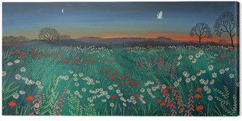 Jo Grundy - Twilight Meadow Canvas Print