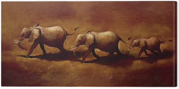 Canvas Print Jonathan Sanders  - Three African Elephants