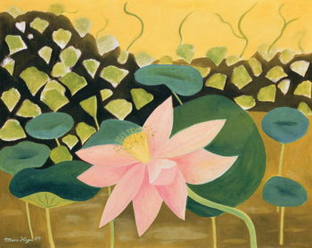 Lotus Flower, 1984 Canvas Print