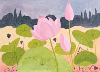 Lotus in the Garrigue, 1984 Canvas Print