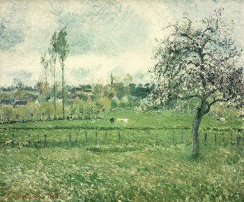 Meadow at Eragny, 1885 Canvas Print
