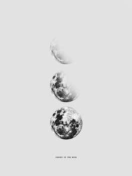 moon5 Canvas Print