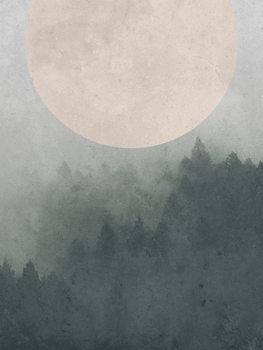 Moonbird Canvas Print