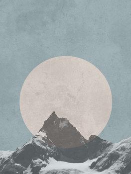 moonbird2 Canvas Print