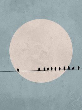 moonbird3 Canvas Print