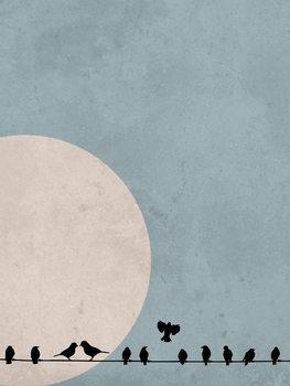 Canvas Print moonbird4