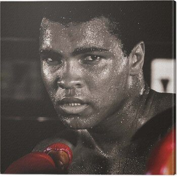 Canvas Print Muhammad Ali - Boxing Gloves