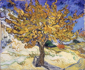 Mulberry Tree, 1889 Canvas Print