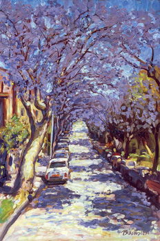North Sydney Jacaranda, 1990 Canvas Print