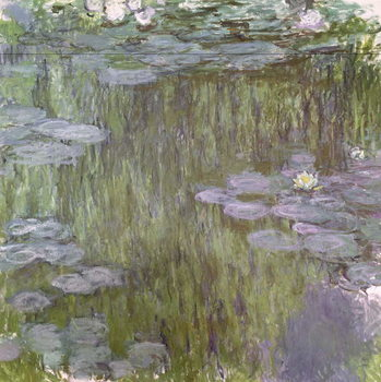 Nympheas at Giverny, 1918 Canvas Print