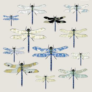 Odonata, 2008 Canvas Print