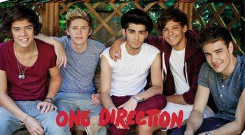 Canvas Print One Direction - garden