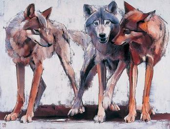 Pack Leaders, 2001 Canvas Print
