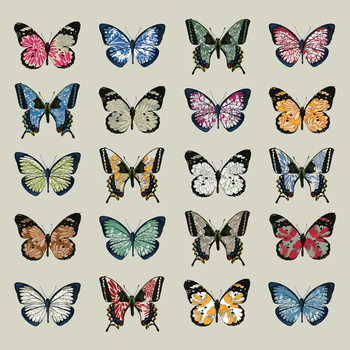 Papillon, 2008 Canvas Print