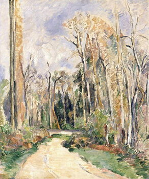 Canvas Print Path at the entrance of the forest