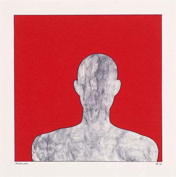 Pilgrim on red Canvas Print