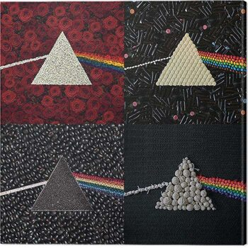 Canvas Print Pink Floyd - Dark Dide of the Moon Collections