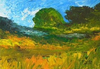 Riviere de Bainet, 2010 Canvas Print