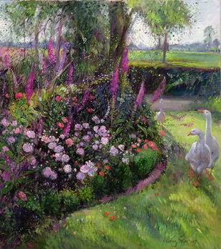 Rose Bed and Geese, 1992 Canvas Print