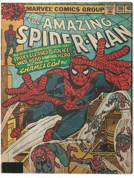 Canvas Print Spider-Man - Chameleon