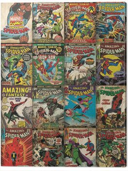 Canvas Print Spider-Man - Covers