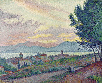 St. Tropez, Pinewood, 1896 Canvas Print