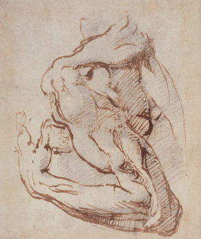 Study of an Arm (ink) Inv.1859/5/14/819 Canvas Print