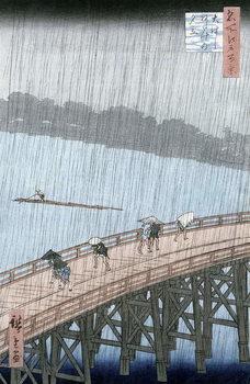 Sudden Shower over Shin-Ohashi Bridge and Atake (Ohashi Atake no Yudachi), from the series 'Meisho Edo Hyakkei' (One Hundred Famous Views of Edo) Canvas Print