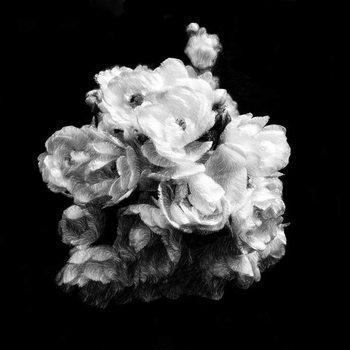 Summer English Roses, 2019, Canvas Print