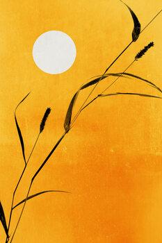 Canvas Print Sunny Days