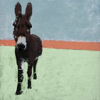 Sussex Donkey, 2019, Canvas Print