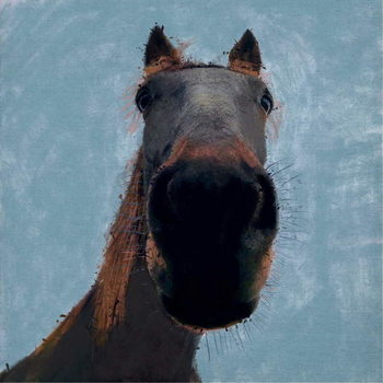 Sussex Horse, 2019, Canvas Print