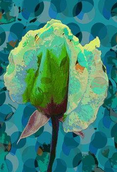 Tea Rose 2 Canvas Print