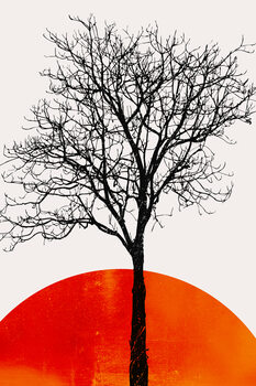 The Birch Canvas Print