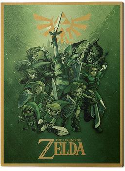 The Legend Of Zelda - Link Fighting Canvas Print