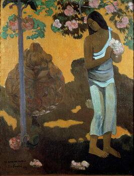 Canvas Print The month of Maria (Te avae no Maria)