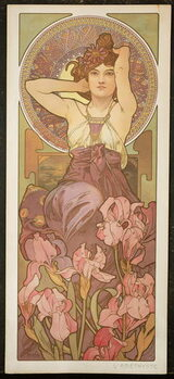 Canvas Print The Precious Stones: Amethyst