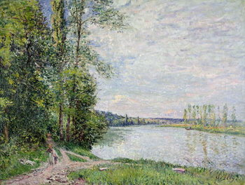 The Riverside Road from Veneux to Thomery, 1880 Canvas Print