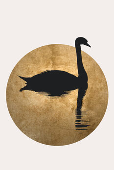 Canvas Print The Swan
