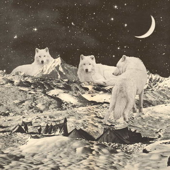 Canvas Print Three Giant White Wolves on Mountains