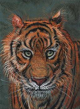 Tiger 2, 2014, Canvas Print